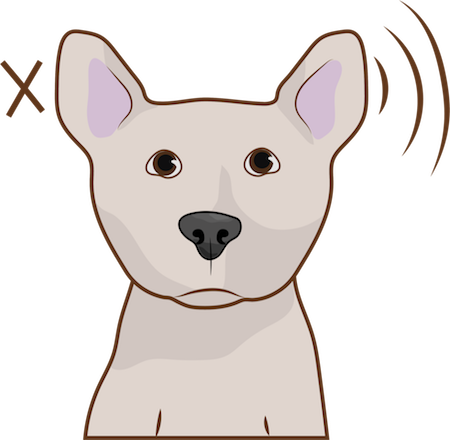 A brown dog with prick ears that stand up with an X next to the left ear and waves of sound lines near the right ear indicating sound