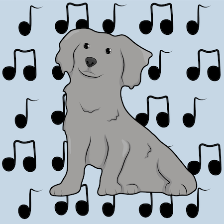 A small gray, thick coated dog with fluffy drop ears sitting down with music notes behind her on top of a blue background