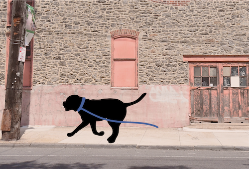 A shadow of a dog dragging his leash running down a sidewalk next to a large stone building in a city