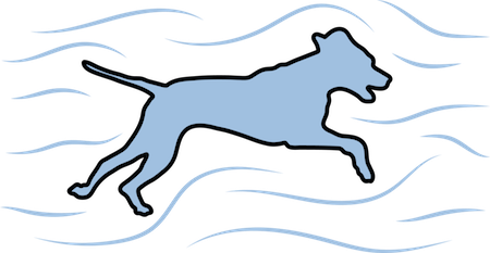 A blue shadow of a dog running to the right