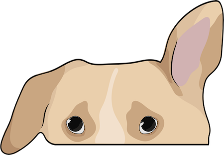 The top half of a tan dog with one ear hanging to the side and the other standing straight up