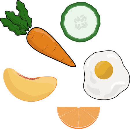 A drawing of a carrot, cucumber slice, peach slice, an egg and an orange slice