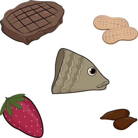 A drawing of a steak, peanuts, strawberry, fish head and apple seeds