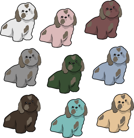 A picture of 9 Shih Tzu dogs in different color coats