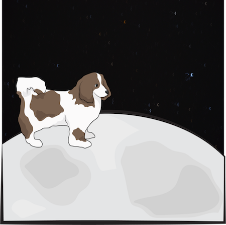 A brown and white longhaired dog standing on the moon
