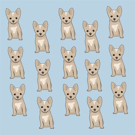 A drawing of 15 tan Chihuahua puppies
