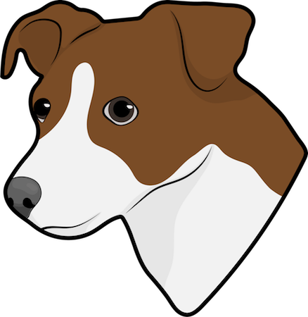 Head shot drawing of a brown and white Jack Russell Terrier dog