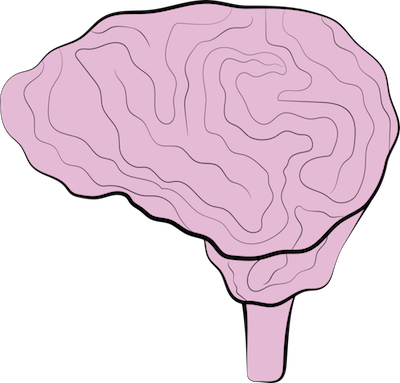 A drawing of a pink brain