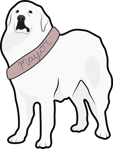 A drawing of a large breed white dog with a sash that says Mayor on it