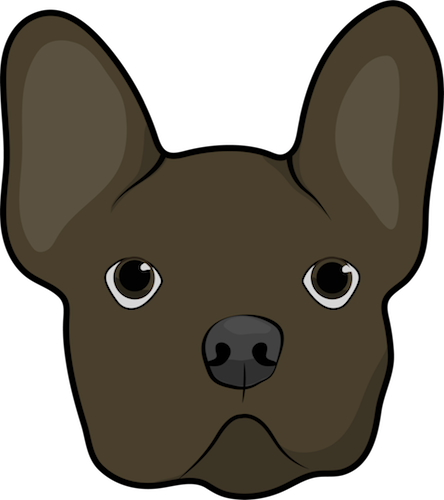 Head shot of a brown dog with a round head, very large ears that stand up, a pushed back face, dark eyes and a dark nose