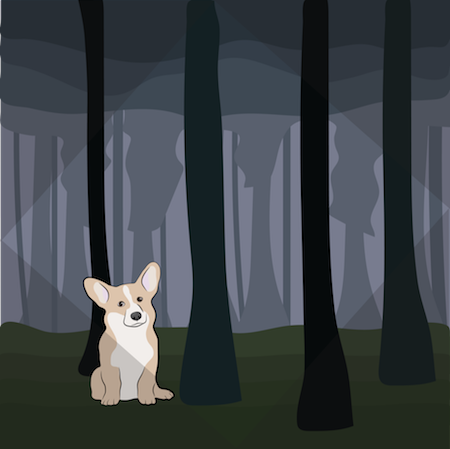 A little tan and white Corgi dog with large prick ears sitting in the middle of a dark wooded forest