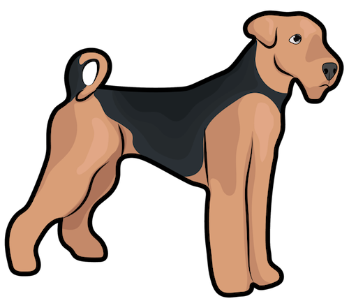Side view of a tan dog with a black saddle, small fold over ears and a tail that curls at the back standing