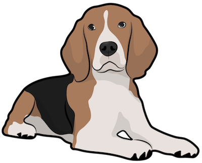 A tricolor, tan, black and white hound dog with long ears that hang to the sides laying down