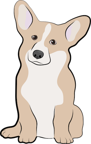 Front view drawing of a tan and white dog with very large prick ears sitting down
