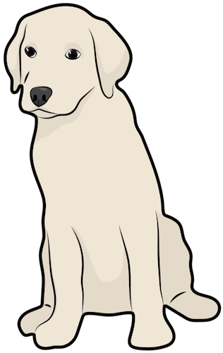 A drawing of a large breed Labrador Retriever