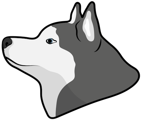 Side view head shot of a gray and white husky dog