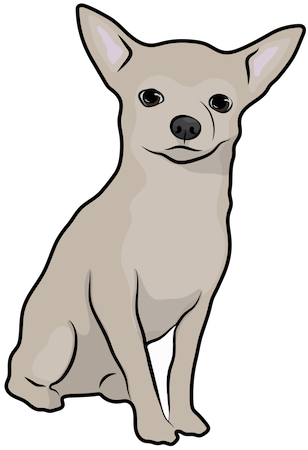 A little tan dog with large prick ears sitting down