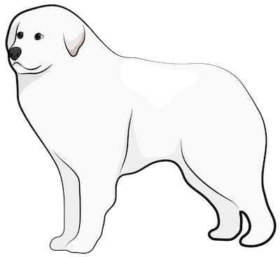 A drawing of a large, thick coated white dog standing up