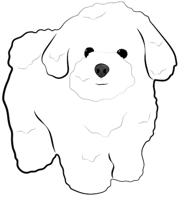 A drawing of a fluffy little white dog standing up