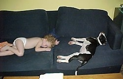 American Pit Bull Terrier puppy sleeping on a couch with a child on the other side