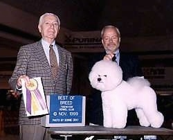 Bichon Frise standing on a table in front of two people. The Person on the Right is holding a ribbon and the person to the left is holding a microphone