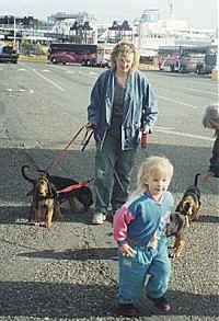 Four Bloodhound puppies being walked by a lady and a little girl is running in front of them