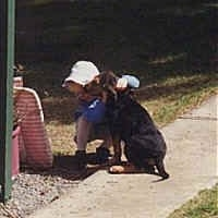 Bloodhound Puppy sitting on a sidewalk with a little girl in front of it
