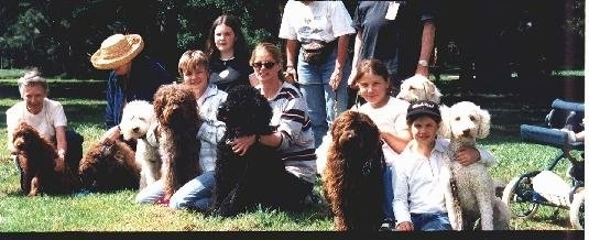 Australian Labradoodles are sitting with there owners in a field