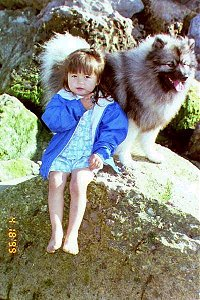 A toddler sized girl in a blue jacket is sitting on a large bolder-sized rock in front of a panting Keeshond.