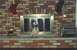 A large fireplace and a tan with black Pug that is wearing antlers is sitting in front of it.