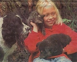 A girl in a red shirt has a puppy in her lap, a kitten on her shoulder and she is looking to the right. There is a black and white dog to the left of her.