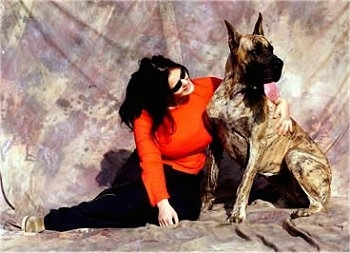A lady in a red shirt is hugging a brindle Great Dane sitting on a backdrop