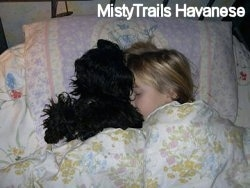 Close up - A blonde-haired girl is sleeping on a bed with a black fluffy dog. They are covered in a blanket.