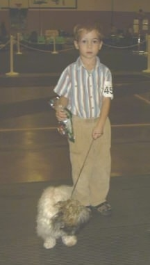 A boy is standing on a concrete surface and it is looking forward. The boy is holding the leash of a white with tan and black dog that is looking down and to the right.