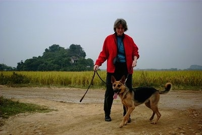 A black and tan Kunming Dog is standing in dirt and preparing to walk down the path. There is a lady wearing red behind it holding the leash