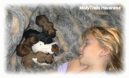 A blonde-haired girl is laying on a rug across from five tiny newborn puppies.