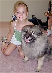 A girl in a green shirt is sitting next to a Keeshond. The dog looks happy with its tongue showing