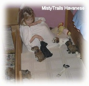A girl is sitting in the back of a whelping box and four puppies are sitting and standing in front of her.