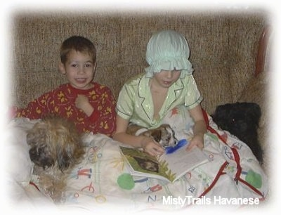 Two kids, a boy and a girl, are sitting on a couch with a blanket over top of them. The little girl is reading a book to a puppy and the boy is letting the dam sit in there lap.