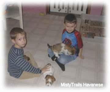 Two boys are sitting crosslegged on a white linoleum floor. One has a puppy in his lap and the other is petting a puppy standing next to him.