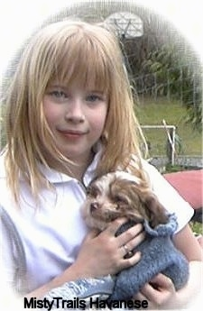 A blonde haired girl is holding a Havanese puppy that is wrapped in a blue sweater.