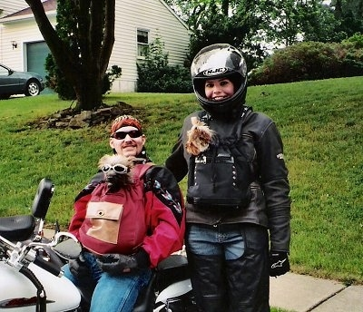 A person sitting on a motorcycle and a person standing next to the motorcycle both have Yorkiepoo dogs in their shirts.
