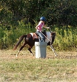 A girl in a pink shirt and a blue riding helmet is riding a brown and white paint pony around a gray trashcan being used as a barrel in a field.