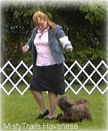 A lady in a pink shirt is looking down at a small, long haired, chocolate brown with white dog that is running across a grass surface