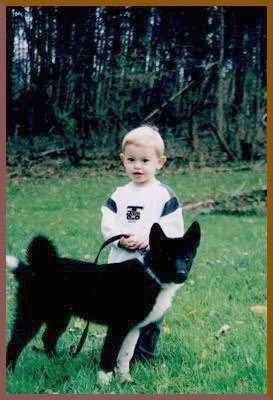 A blonde haired boy is standing behind a black and white Karelian Bear puppy in grass in front of woods.