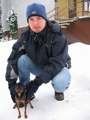 A black with brown Prazsky Krysarik dog is standing in snow in front of a man in a blue ski hat who is kneeling down with his hands on the dog.