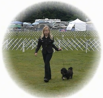 A blonde-haired girl is walking a black with white dog across an enclosed field at a dog show.