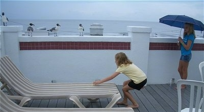 Four Seagulls sitting on a wall next to two girls who are feeding them