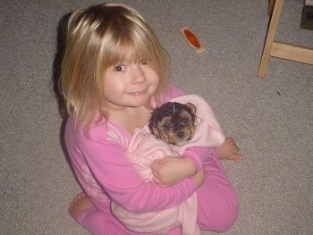 Chacy Ranior Puppy is wrapped in a pink blanket. It is being hugged by a little girl with blonde hair who is also wearing pink.