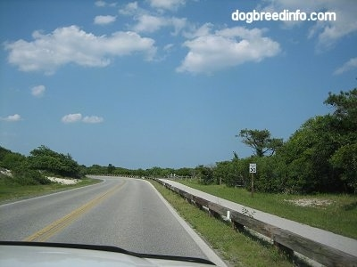 Road leading to Assateague Island Maryland